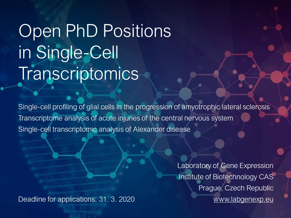 Open PhD Position.jpg